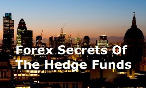 Hedge fund forex